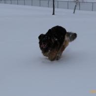 Running Take 2