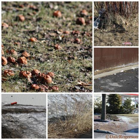 Spring's Detritus