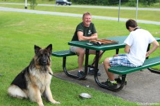 Big backgammon game