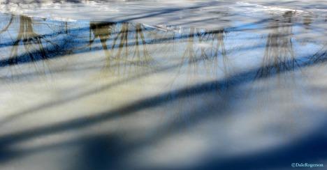 Reflections on melting ice