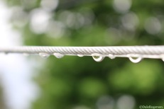 Raindrops on Clothesline