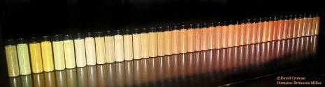 Rainbow of Chili Powder