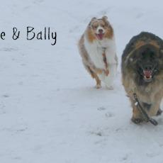 Zeke and Bally
