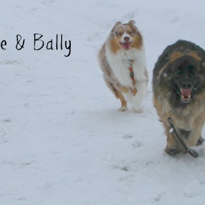 Zeke and Bally