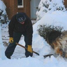 Plowing through