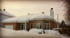 Reasonable house