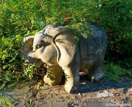 Welcoming Elephant