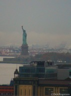 Lady Liberty through the Zoom